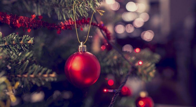 Kerstboom Nordmann kopen bijSTOX