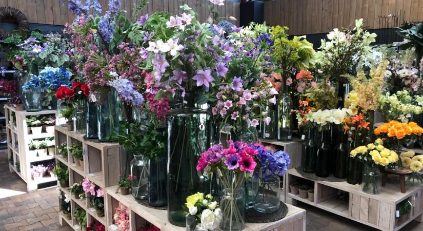 kunst orchidee en nepplanten in roermond, venlo of Heerlen